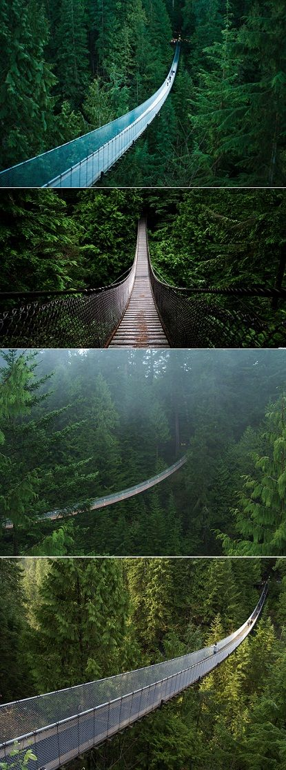 The Capilano Bridge in Vancouver